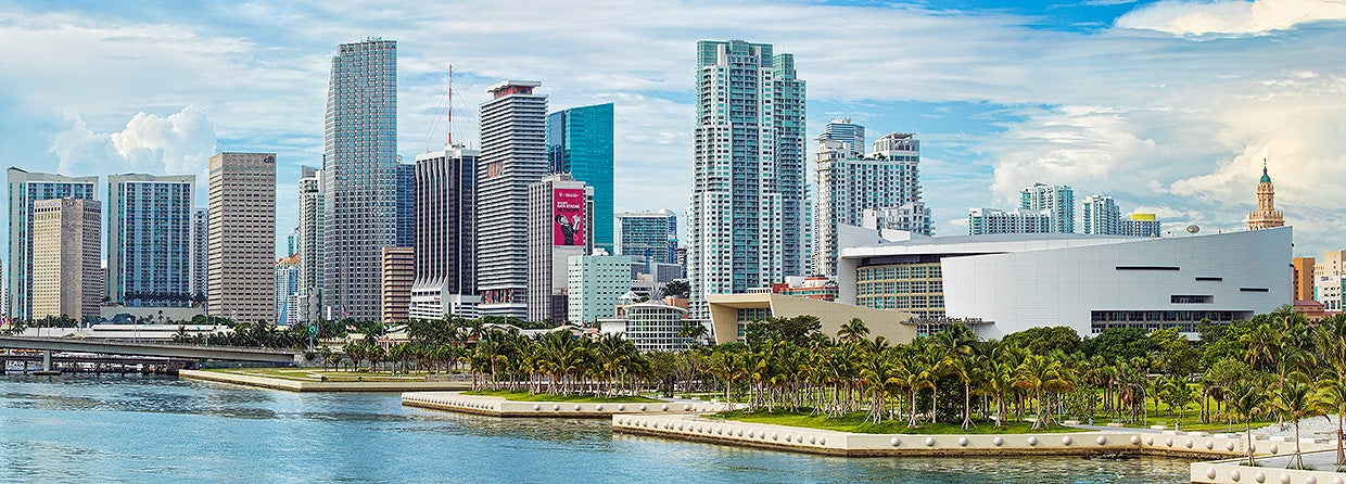 American Airlines Arena Skyline