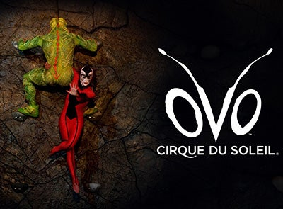 Cirque-Ovo-Event-Thumb.jpg