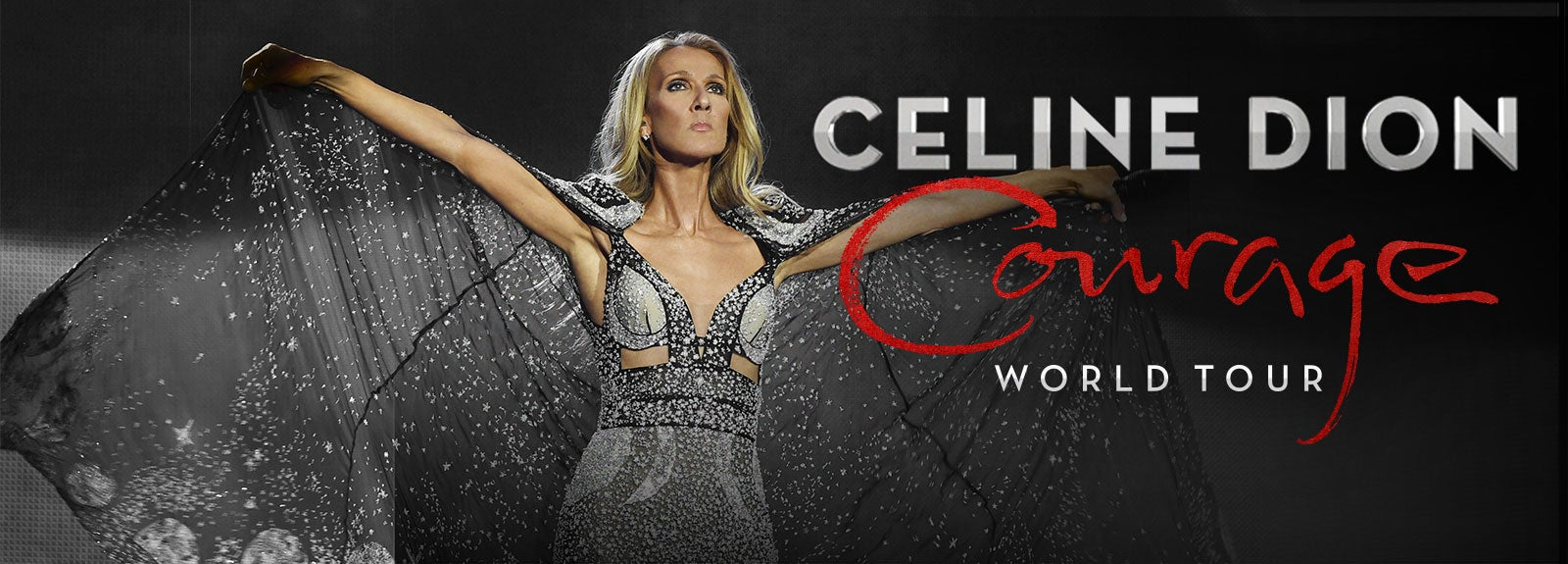celine dion courage - photo #11
